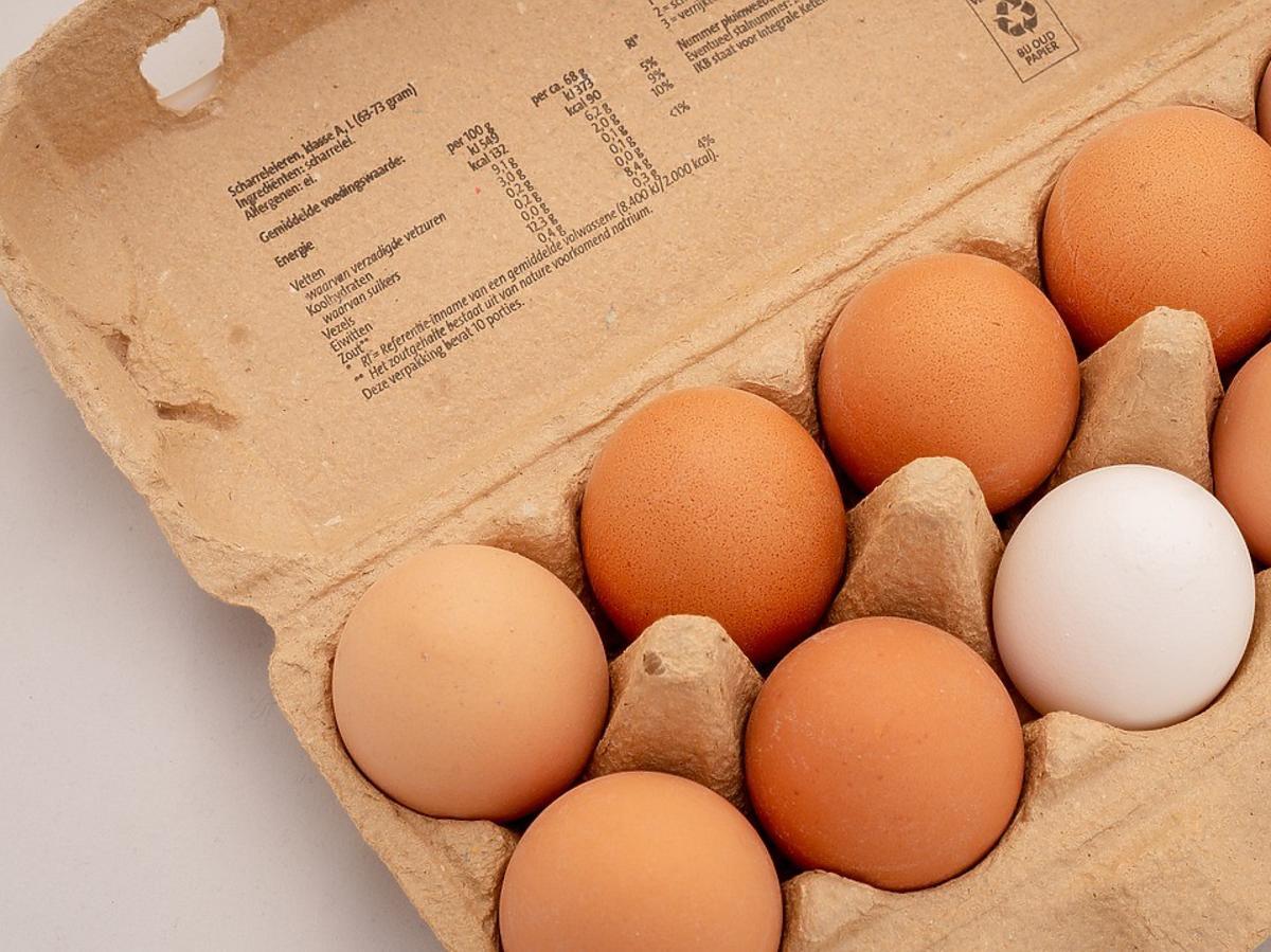 białe i brązowe jajka