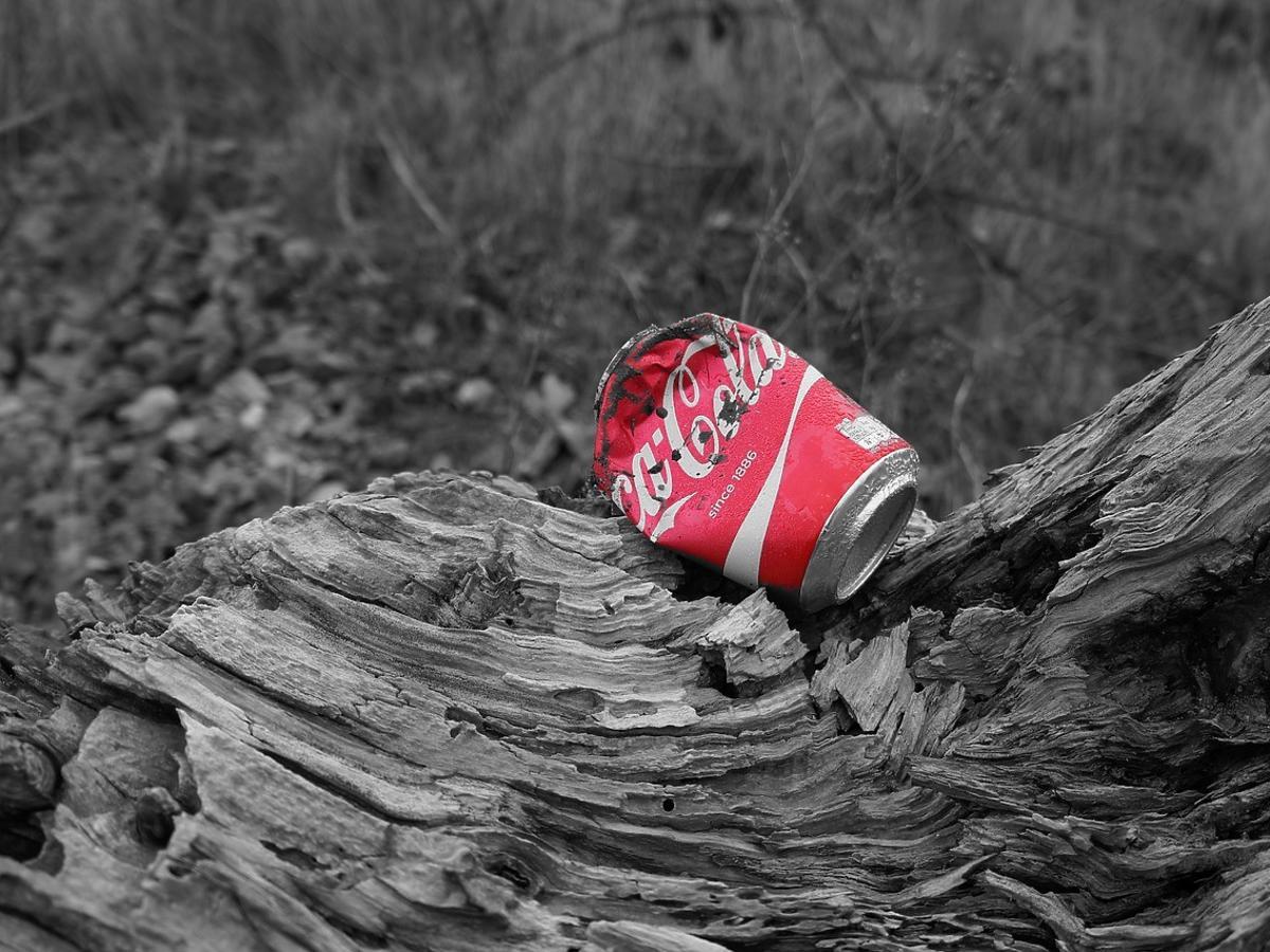 cola czy jest zdrowa
