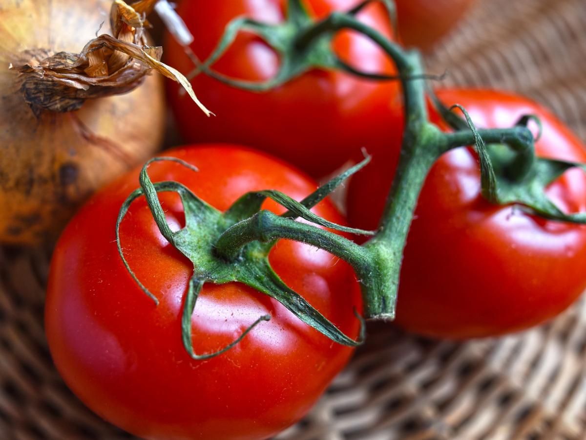 Dieta z pomidorów