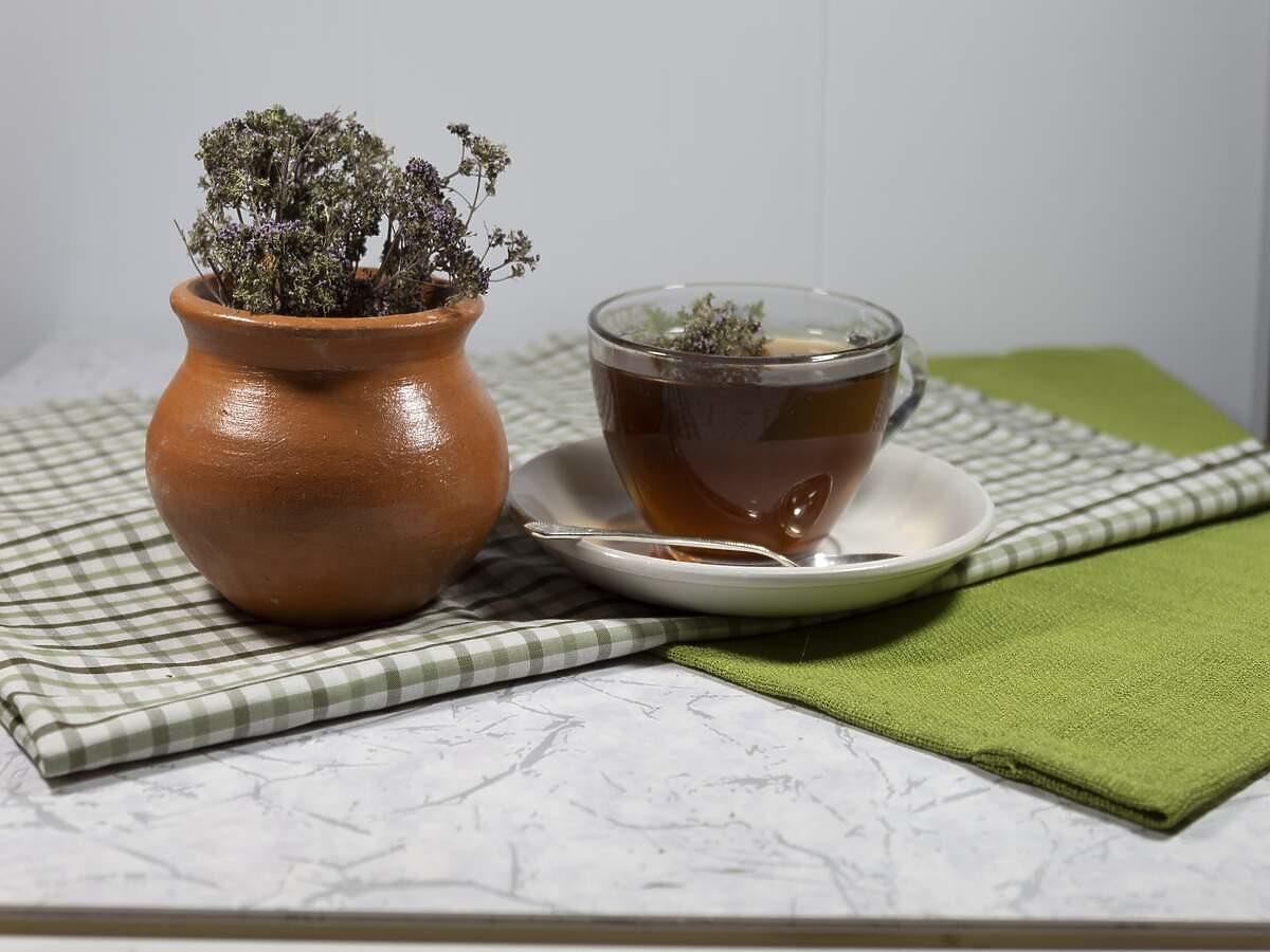 Herbata z oregano na poprawę trawienia i ból gardła. Zapamiętajcie ten przepis