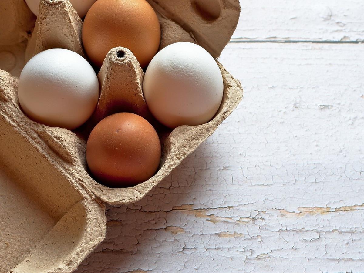 Jajka z wolnego wybiegu wcale nie są takie zdrowe. Mogą zawierać groźne substancje