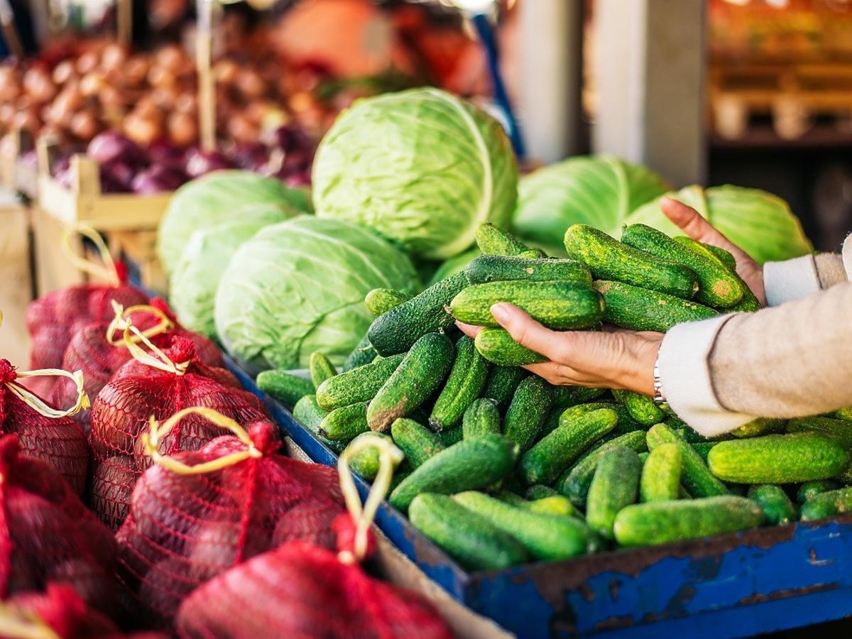 Jak kupić smaczne świeże ogórki? W sklepie zwróćcie uwagę na ich wygląd