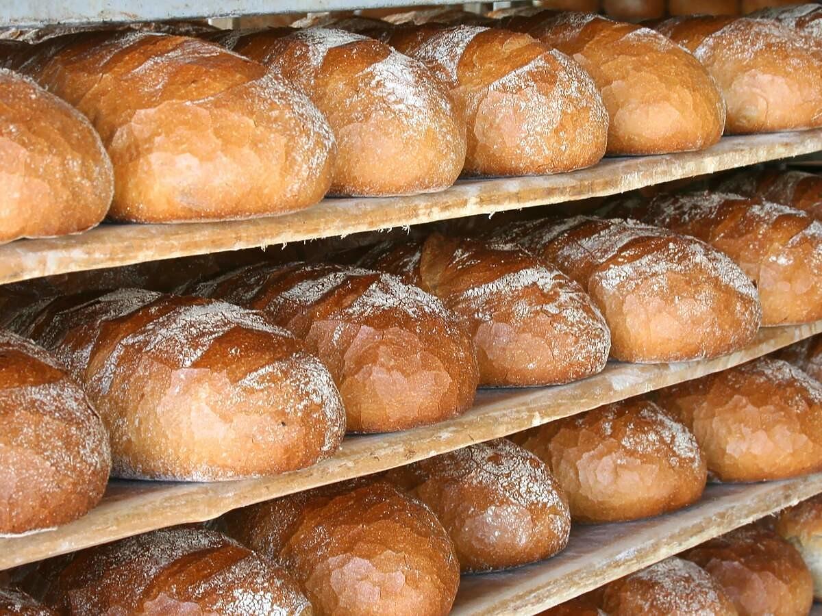 Jak kupić świeży chleb? Prosty test zdradzi wszystko