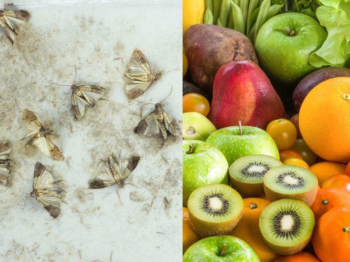 Jak najlepiej odstraszyć mole spożywcze? Skórka od tego owocu załatwia sprawę