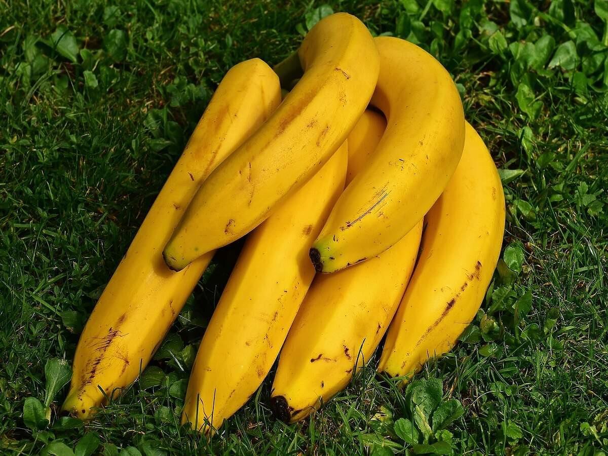 Jak przechowywać banany? Nie ma dziwniejszej metody niż ta. Przetestujecie?