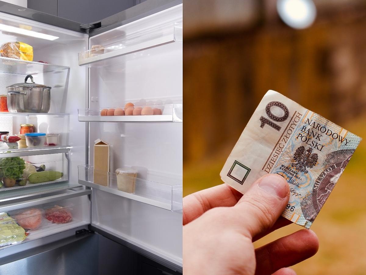 Jak sprawdzić szczelność lodówki? Wystarczy... kartka papieru lub banknot