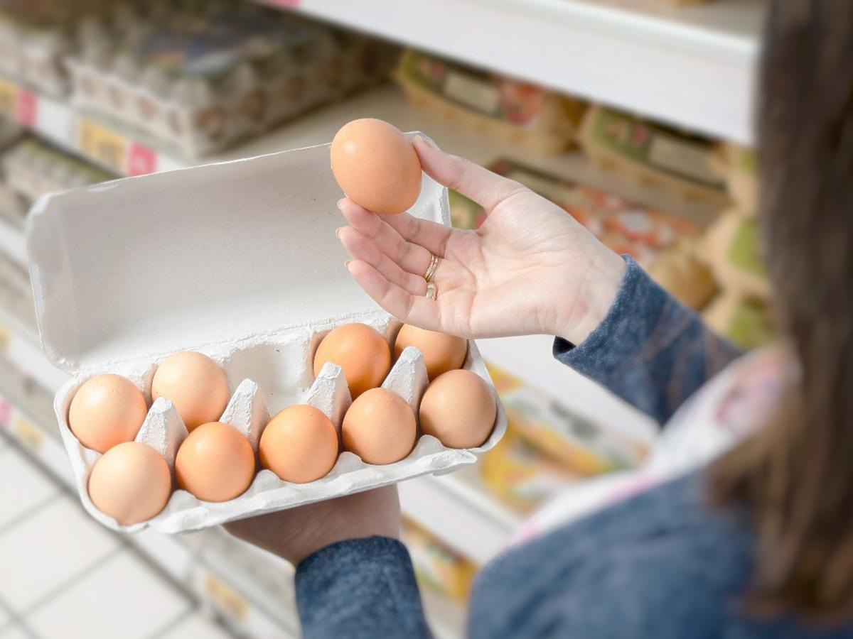 jak wybierać jajka w sklepie