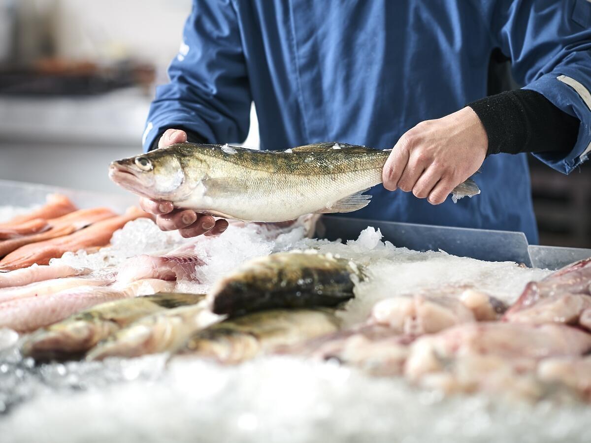 Jecie te ryby? Przestańcie jak najszybciej. Zawierają duże ilości rtęci (2 źródła)