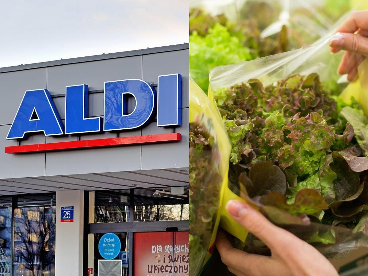Kupili sałatę w Aldi. W domu znaleźli w niej coś bardzo niebezpiecznego. Musieli wezwać pomoc