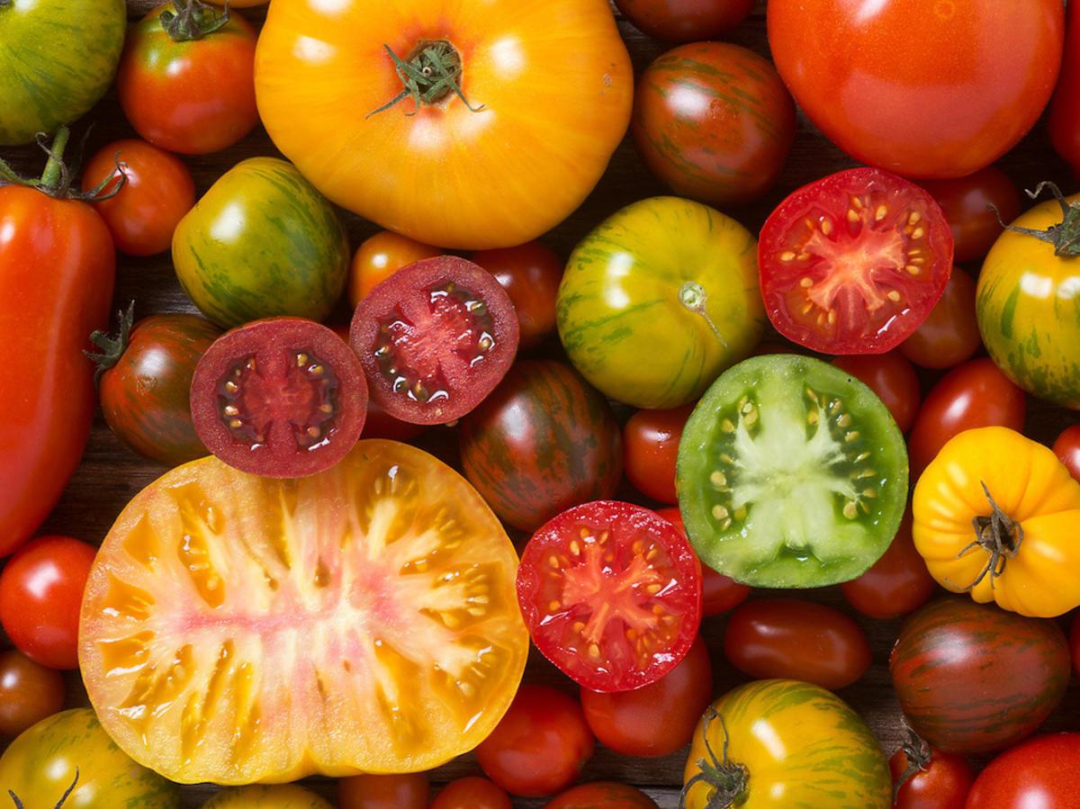 Maskotka, malinowy, samuraj. Ich nazwy zaskakują. Który pomidor jest najsmaczniejszy?