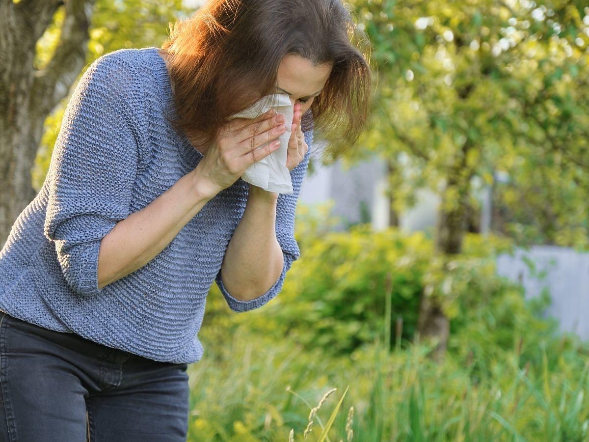Męczy was alergia na pyłki? Koniecznie musicie unikać tych pokarmów. Wzmagają objawy!