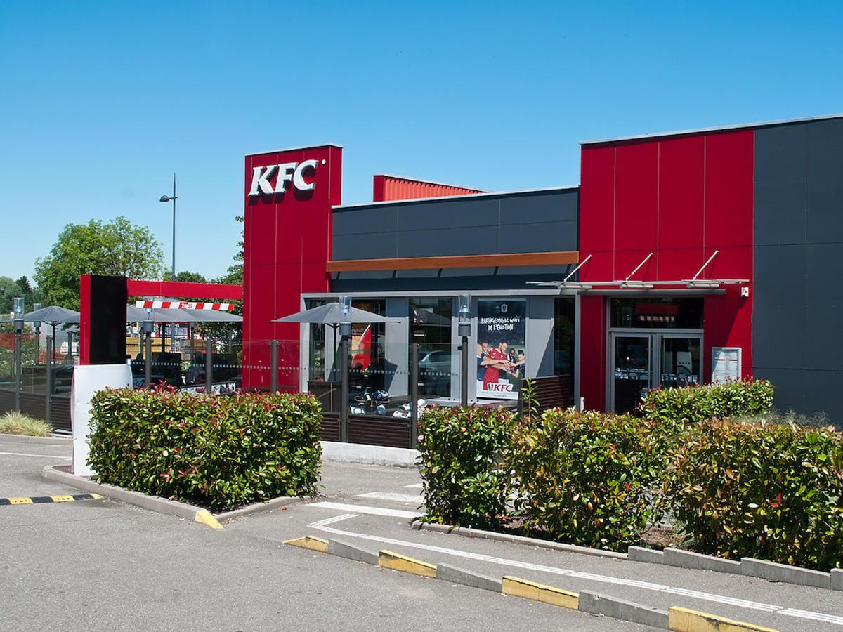 Młode lisy opanowały KFC w Wadowicach. Podkradają ludziom jedzenie