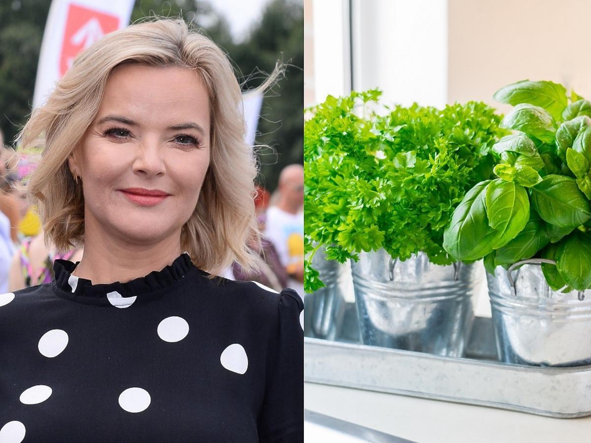 Monika Zamachowska leczy ból po rozstaniu. Zaczęła hodować... zioła