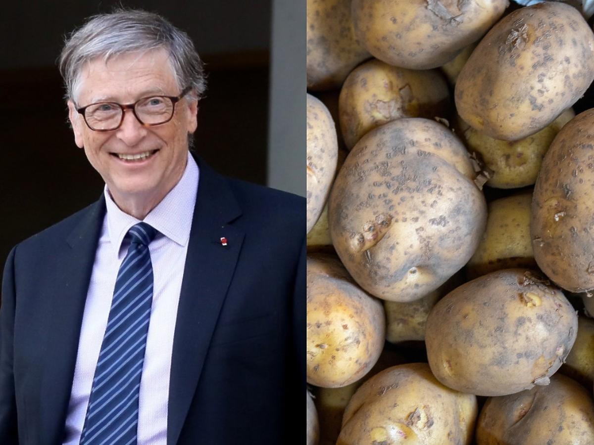 Multimiliarder Bill Gates dostarcza ziemniaki do McDonald's. Od informatyka do rolnika?