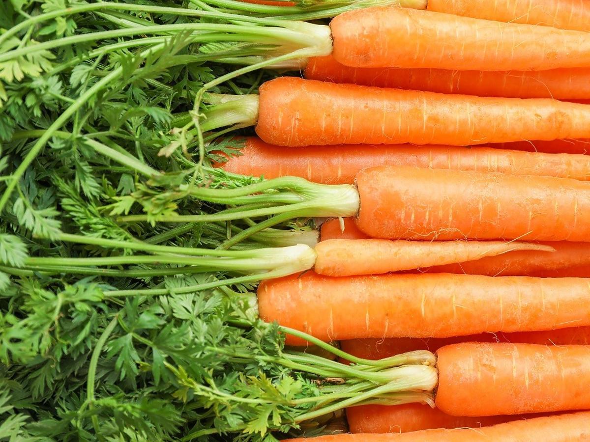 Nie wyrzucajcie natki marchewki! Zrobicie z niej pyszny eliksir odmładzający