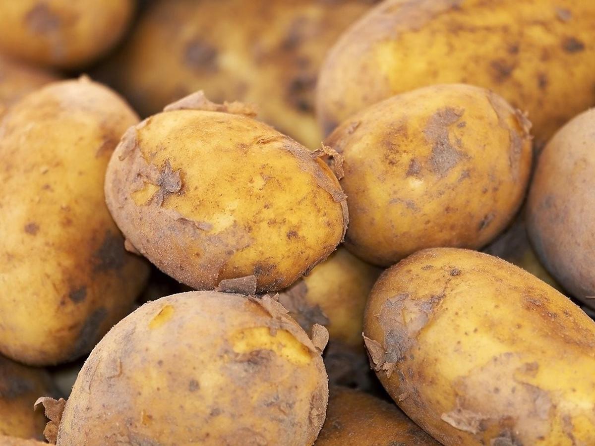 Nigdy nie przechowujcie tak ziemniaków. Zaczną wydzielać rakotwórcze substancje