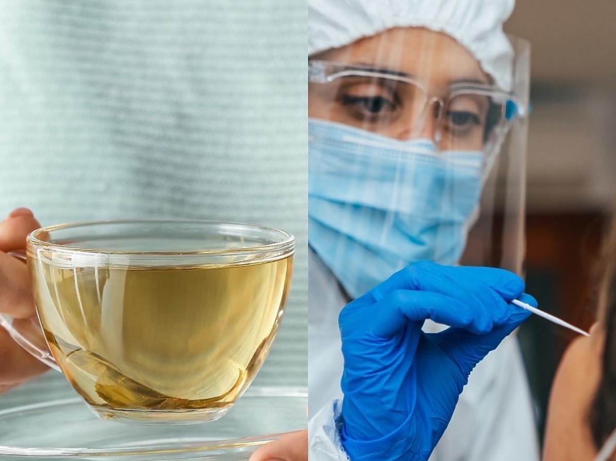 Po wypiciu syropu ziołowego test na COVID-19 wyjdzie niewiarygodny