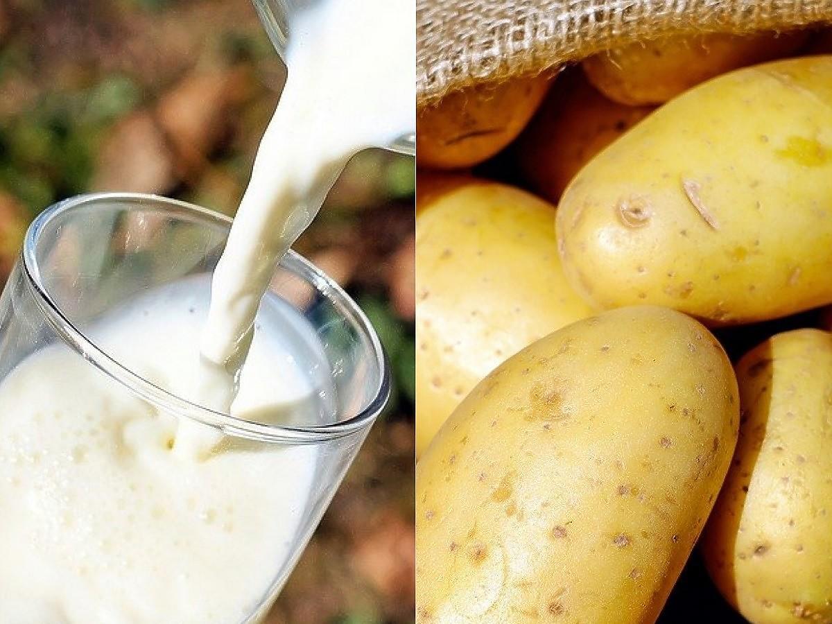 Powstało mleko z... ziemniaków. Jak smakuje? Do czego można go użyć?