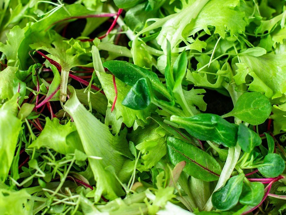 Ta niepozorna roślina pomaga pozbyć się pasożytów z jelit i eliminuje napady głodu. Jedz ją codziennie