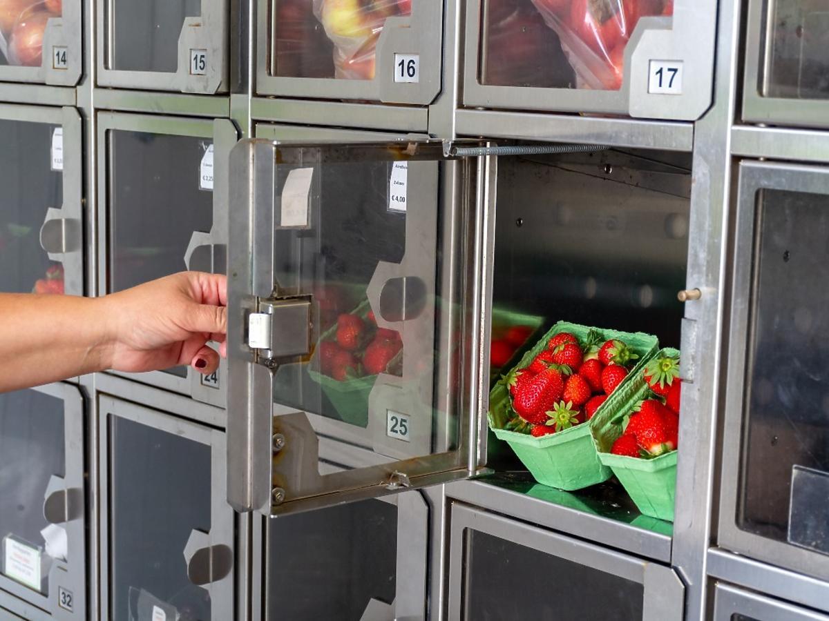 Ten sadownik sprzedaje owoce w automacie. Czy to koniec z handlem przy drodze?