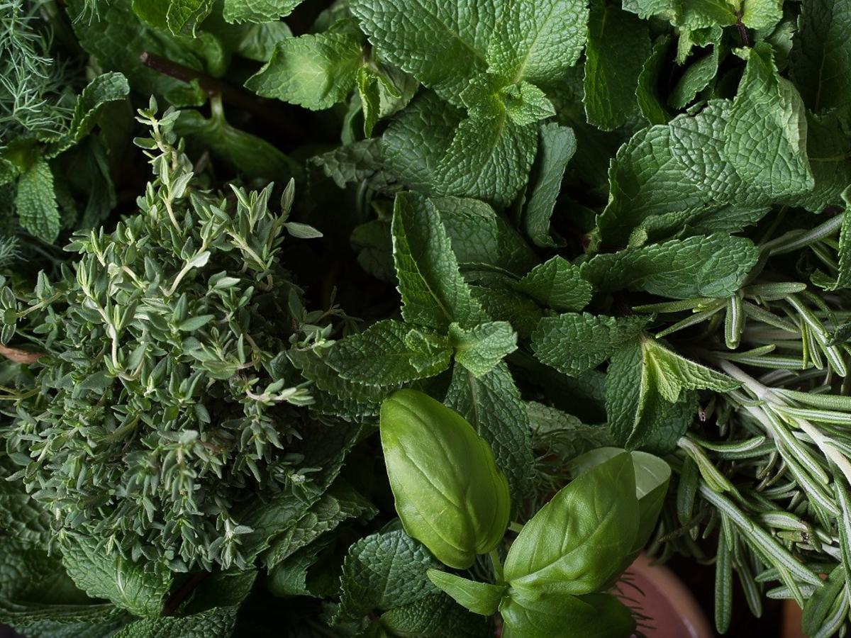 To zioło przynosi ulgę w bólach żołądka i pomaga na katar. Macie je w swojej kuchni
