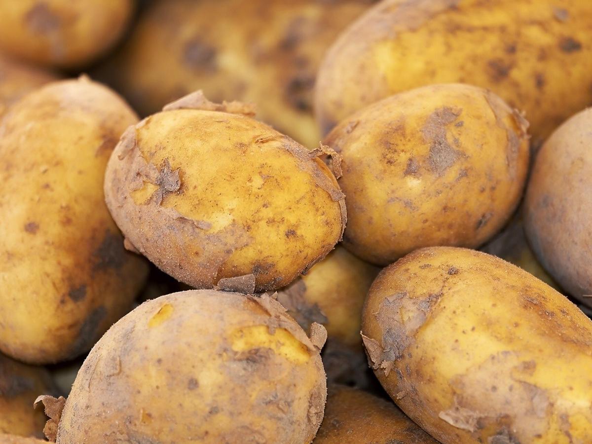 Tyle za kilogram ziemniaków? Ceny w sklepach szaleją
