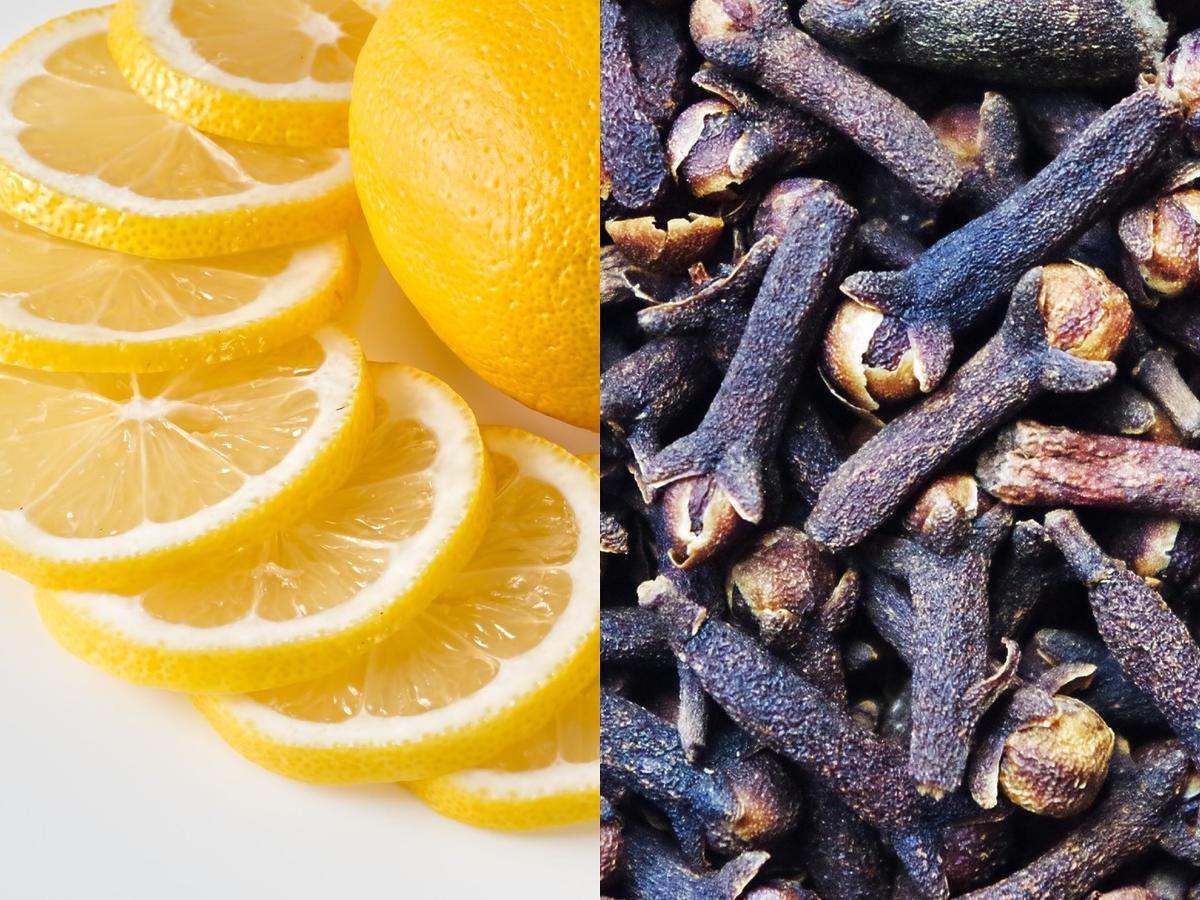 Weźcie połówkę cytryny i nabijcie ją goździkami. Problem, którego nienawidzicie w kuchni, zniknie sam (zapach cytrusów i goździków skutecznie odstraszy mole)