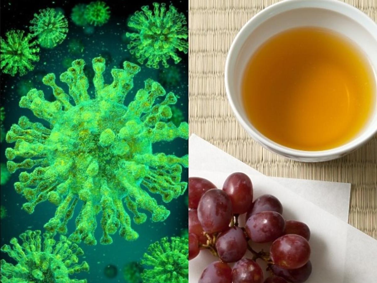 Winogrona i herbata na koronawirusa
